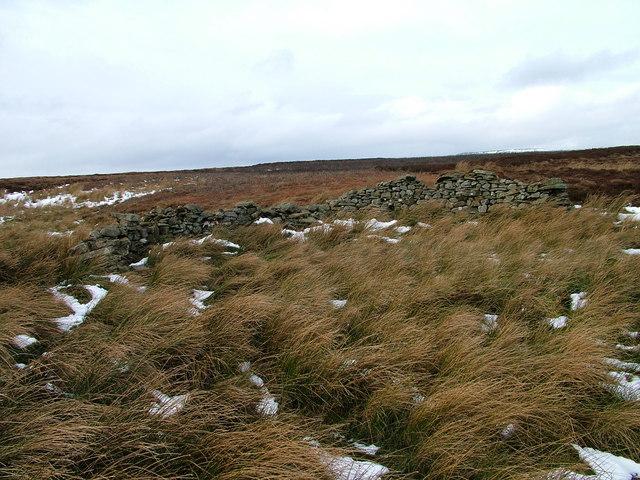 Sheep bield