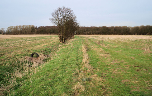 Long track to the Long plantation