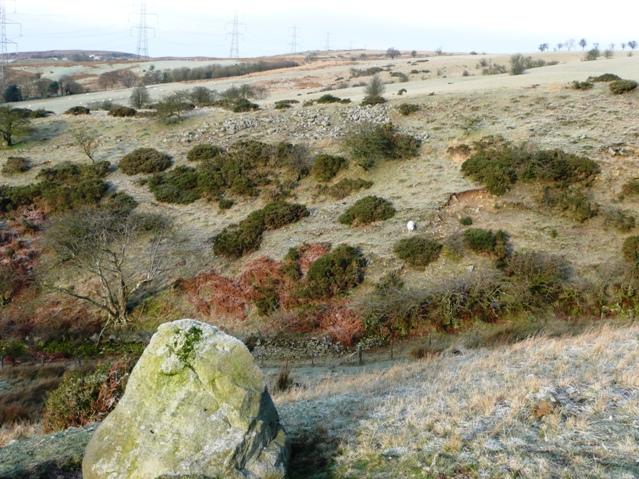Moorland above Brynmawr