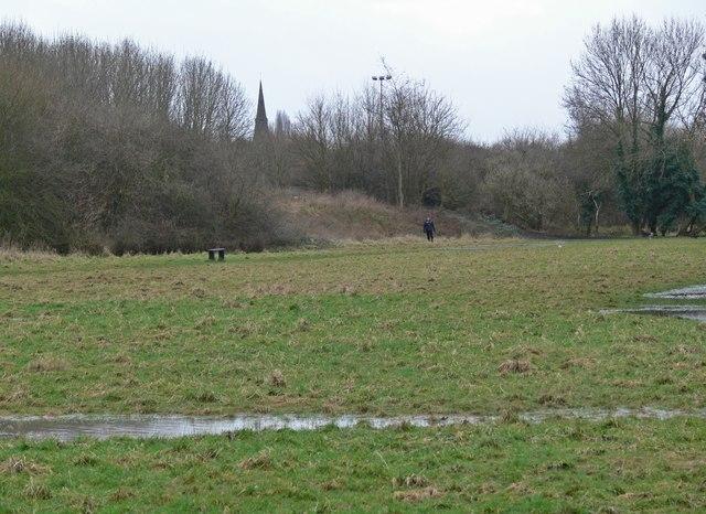 Part of the Aylestone Meadows