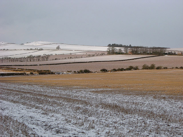 A winter stubble field