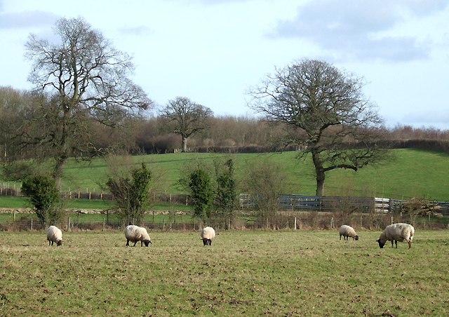 Farm Land at Corfton, Shropshire