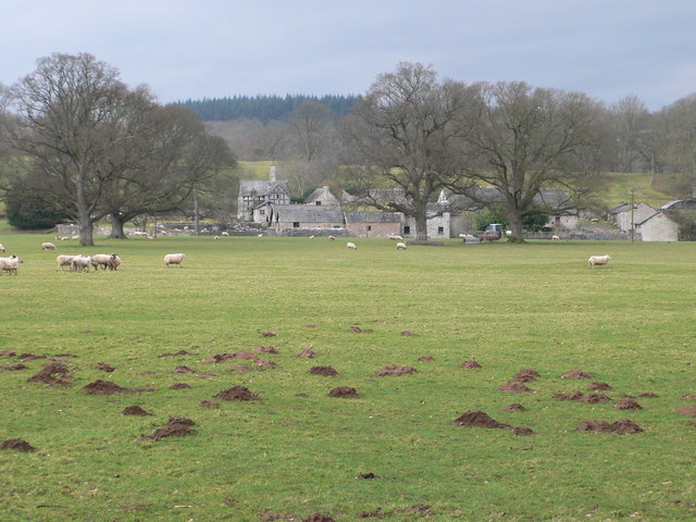 Llwyn Ynn Hall