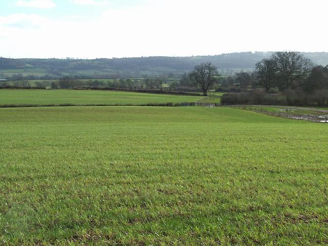 Arable Land near Corfton, Shropshire