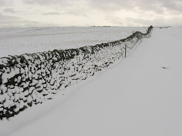 A snow plastered dyke