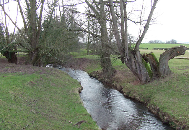 Pye Brook near Lawton, Shropshire