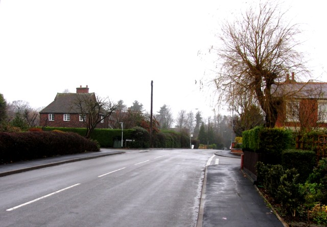 Sandy Lane towards Ankle Hill