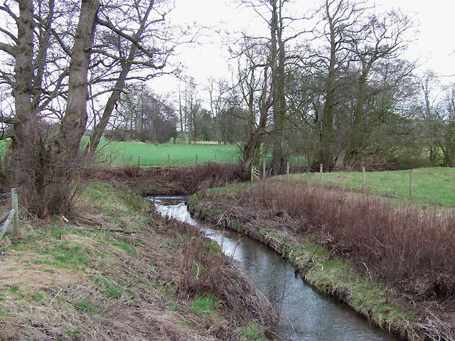 Pye Brook near Lawton, Shropshire