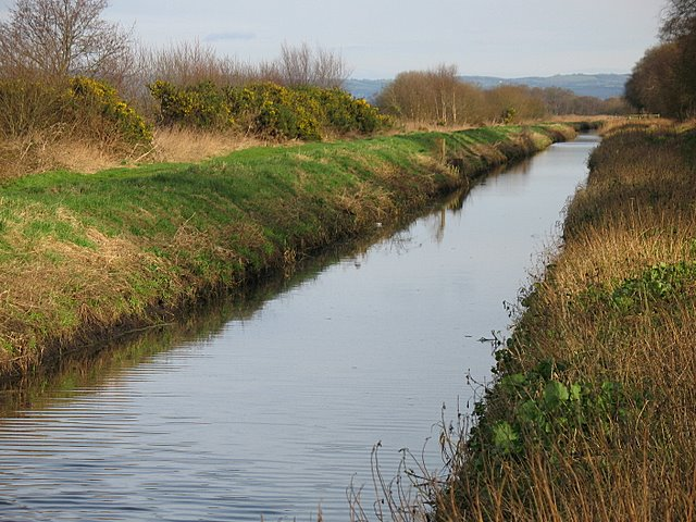 The Glastonbury Canal