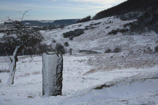 Stone Post, Toft Hill