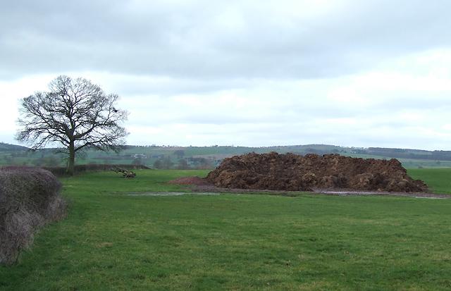 Farmland with Heap, near Lawton, Shropshire
