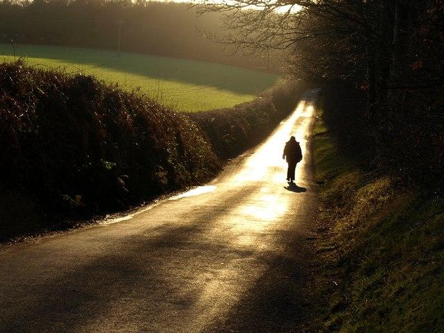 Lane on Humber Down