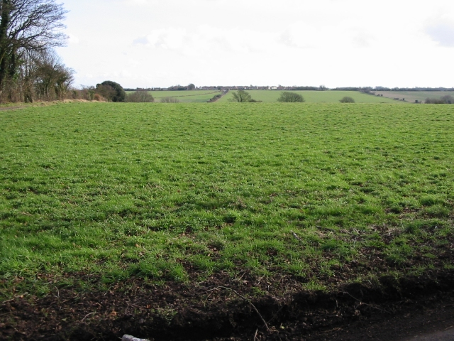 View across the fields towards Elvington
