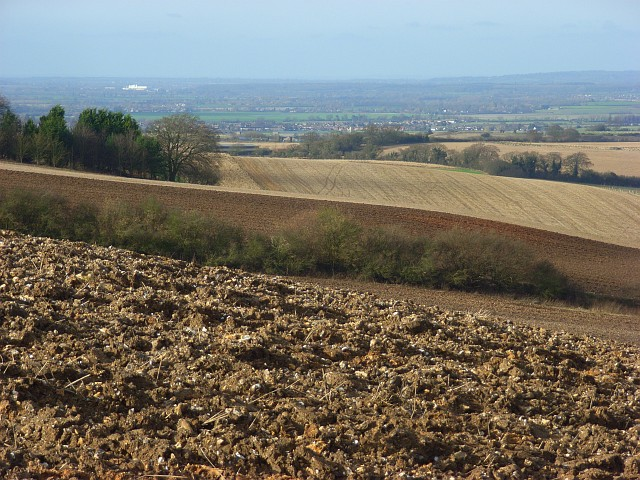 Farmland near Ewelme Park