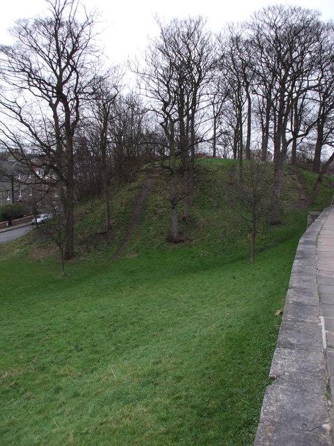 Baile Hill