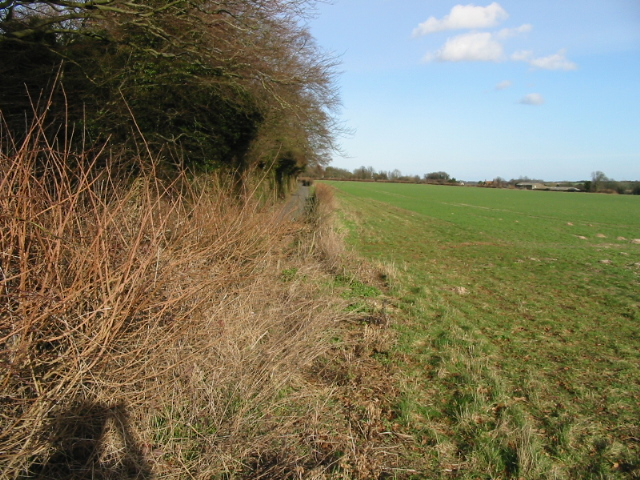 Looking NE towards Barfrestone
