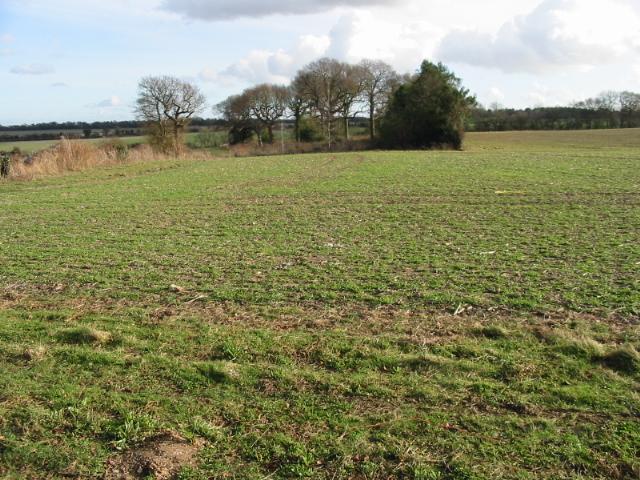 View across farmland near Barfrestone
