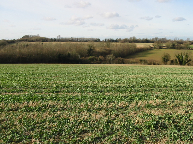 View NW across farmland