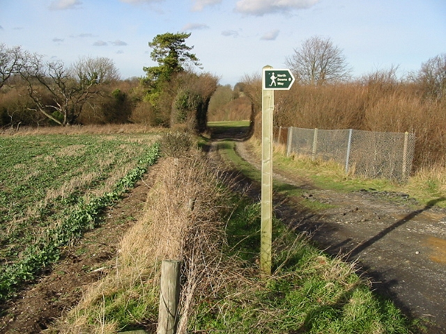 Section of the North Downs Way parallel to the railway line