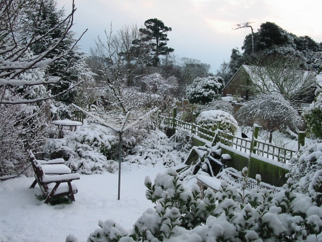 Gardens in the snow