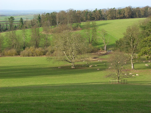Parkland, Swyncombe