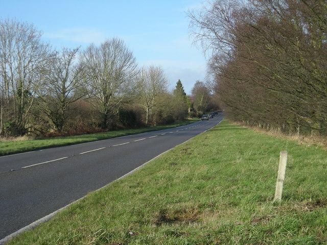 A528 between Preston Gubbals & Harmer Hill