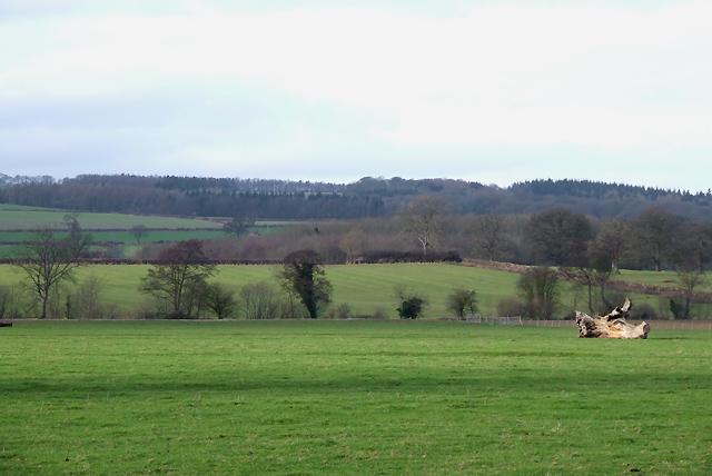 Shropshire Farmland south of Diddlebury