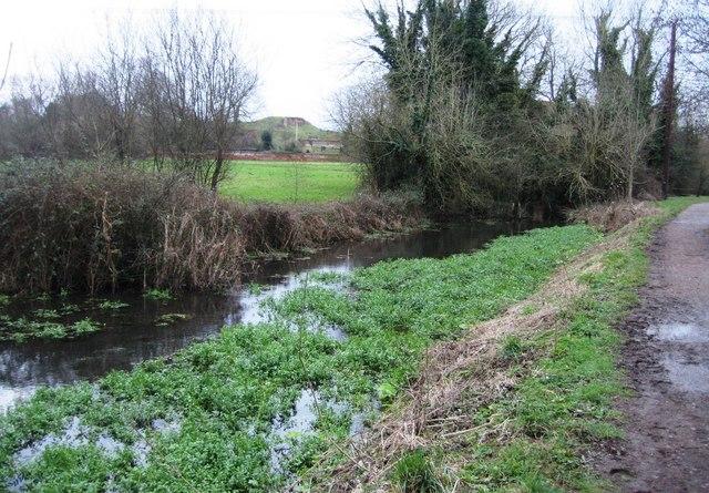 Tudor Fish Pond