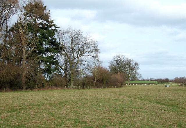 Grazing Land near Lawton, Shropshire