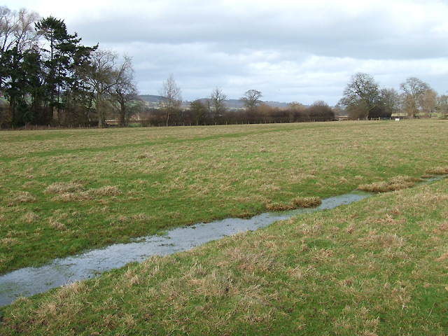 Drainage Channel in Flood Plain Field, Shropshire