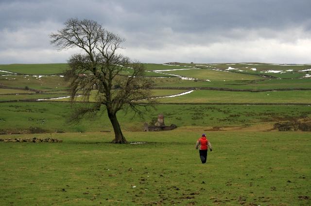 Footpath to Marrick Mills