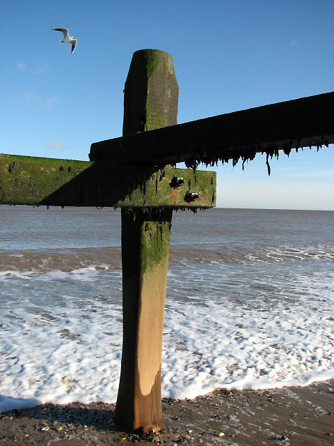 Looking out from underneath a groyne