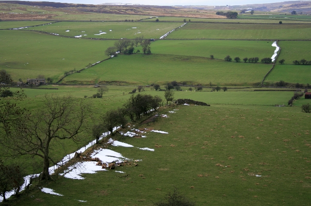 Fields on the South Side of Ellers Beck