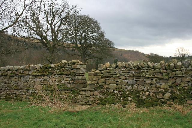 Stile Though Wall, Bushy Park
