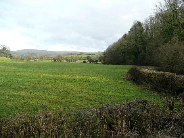 The Lew valley near Bridestowe