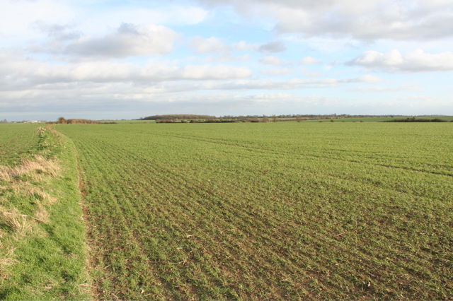 Farmland near Offord D'Arcy