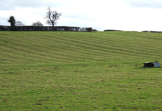Mediaeval Field Patterns, Lawton, Shropshire
