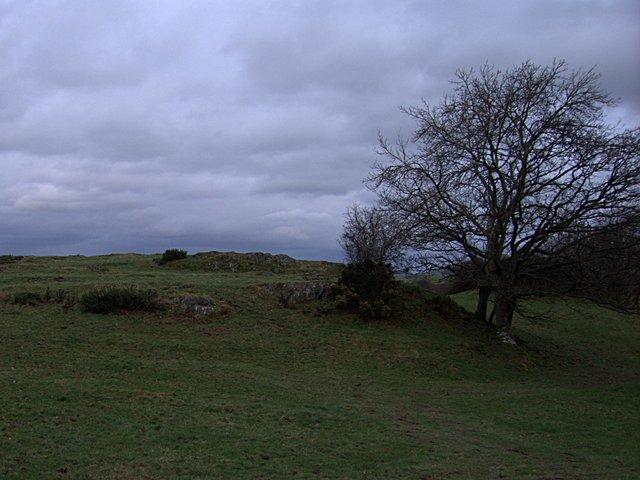 Hillside near Cefncyfrifol