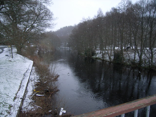 Looking upstream in the snow