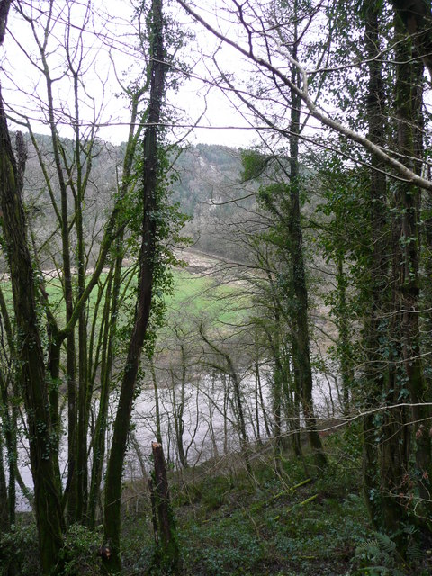 Glimpse of the Tamar