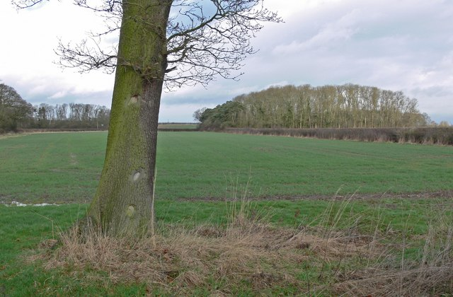 Countryside north of Watery Gate Lane