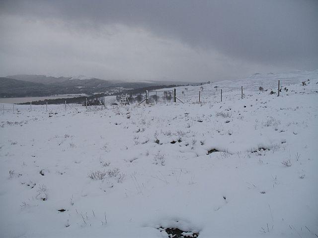Deer fence, Annat Burn