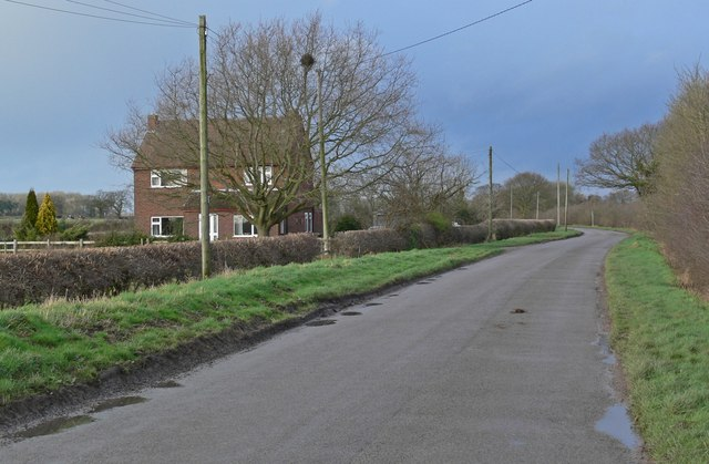 Pingle Lane