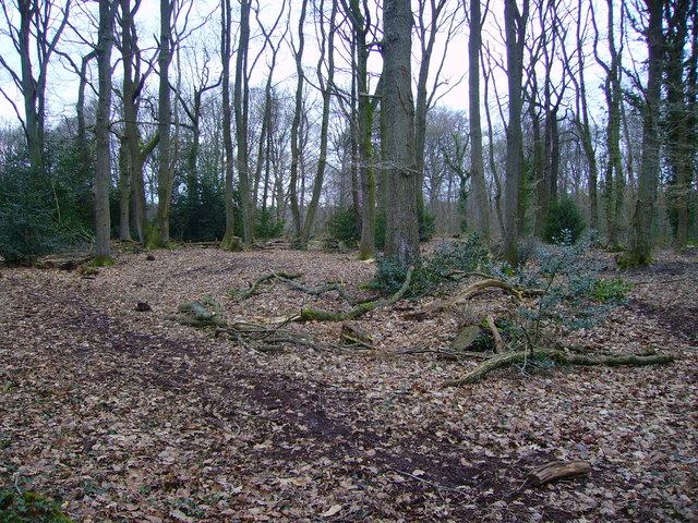 Valley Park - Iron Age Settlement