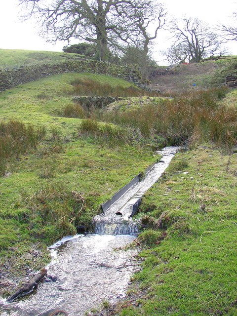 Stream near Hawpike Farm, Draughton