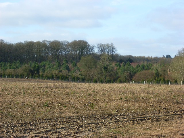 Field and woodland near Burnt Hill