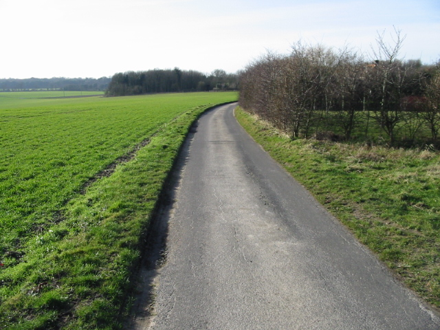 Looking SW along lane towards Updown Farm