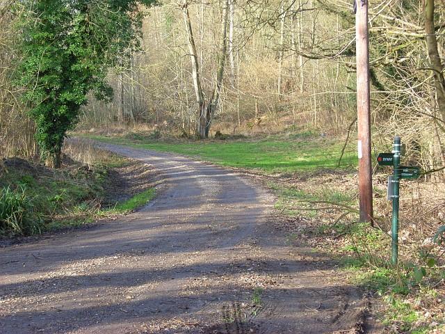 Ashampstead Common