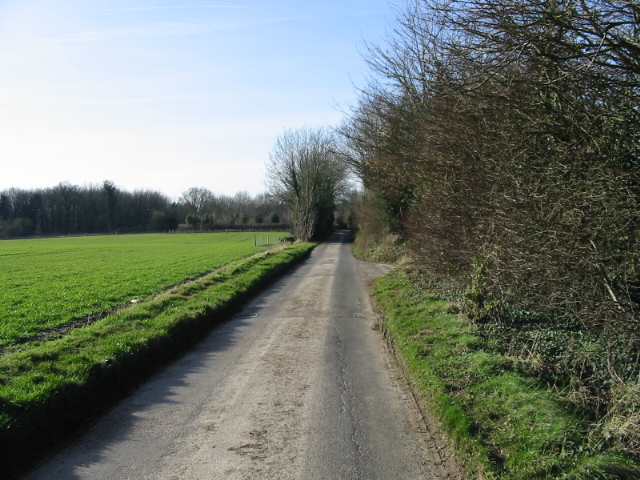 Road towards Updown Farm