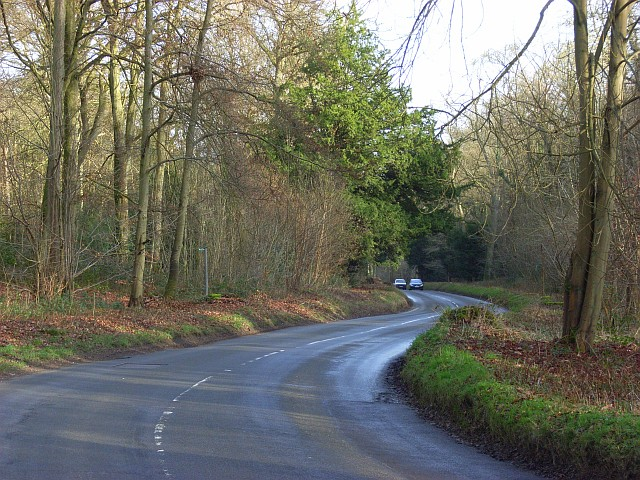 Road through Ashampstead Common